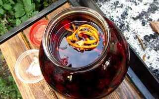 Рецепты настоек из ежевики