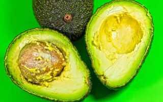 Описание и фото фрукта авокадо