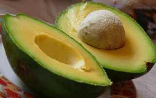 Плоды авокадо это фрукты или овощи