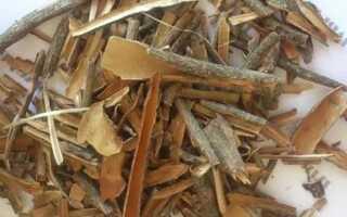 Лечебные свойства коры калины