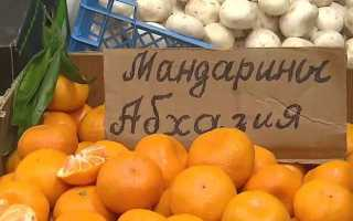 Фото и описание абхазских мандаринов