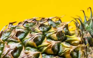 Как дома сохранить ананас