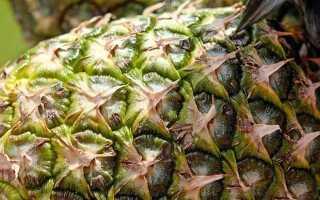 Причины жжения во рту от ананаса