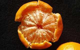Можно ли поправиться на мандаринах