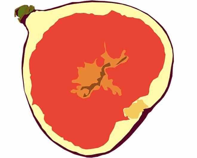 krasnyj-plod