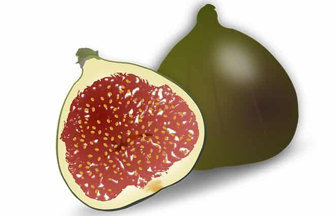 risunki-plodov