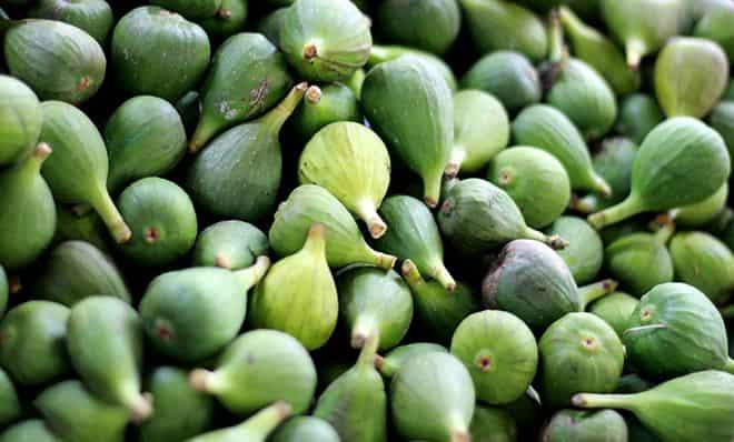 suhim-fruktom