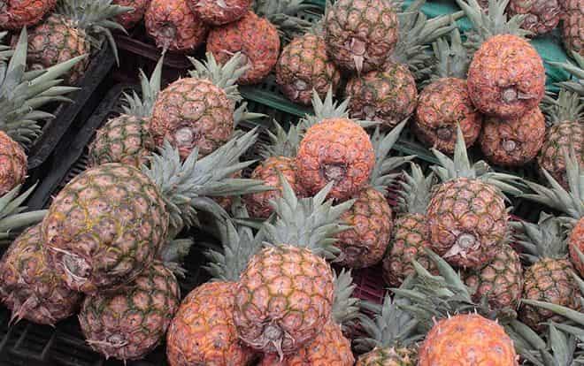 neskolko-fruktov