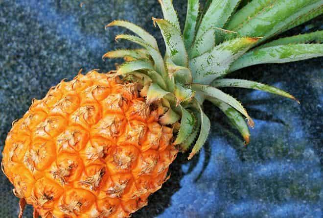 zrelost-ananasa
