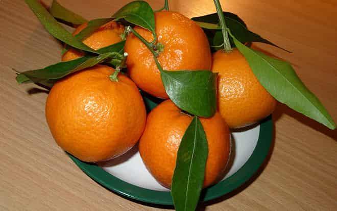 citrus-iz-kitaya