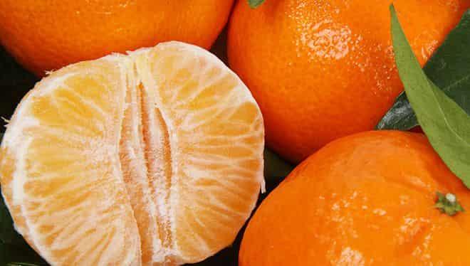citrusovogo-frukta