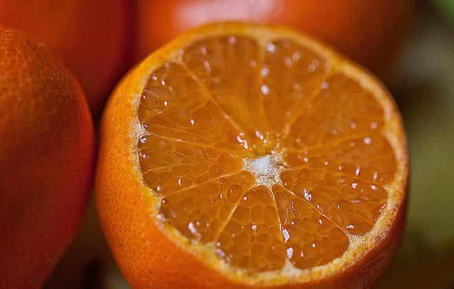 citrusovogo-ploda