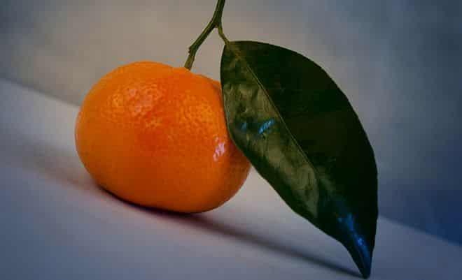 ehto-antioksidant