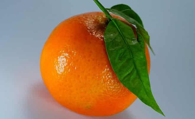hraneniya-citrusov