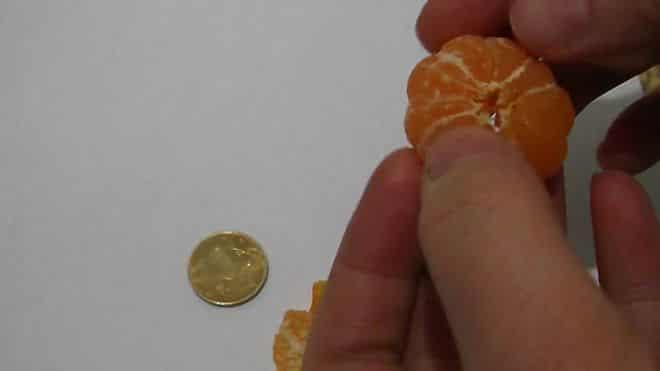 melkie-mandariny