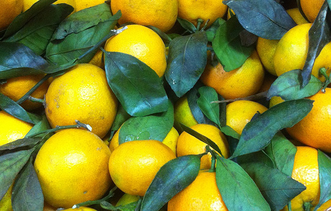 mnogo-mandarinov-ili
