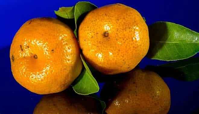 mnogo-mandarinov