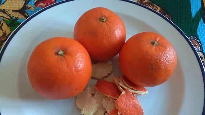 priem-fruktov