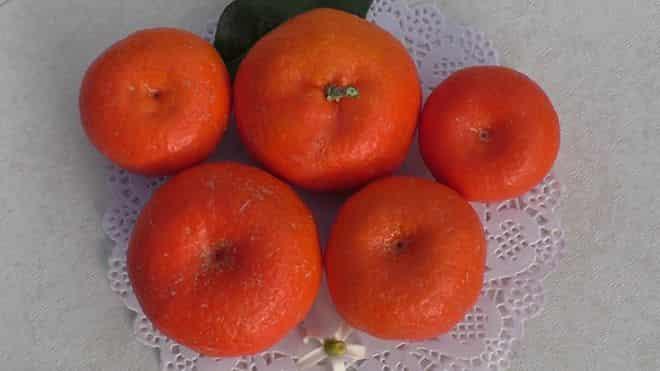 priplyusnutye-frukty
