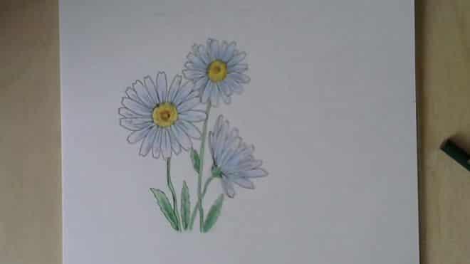 cvetnymi-karandashami