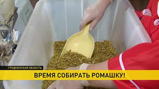 mestnye-vannochki