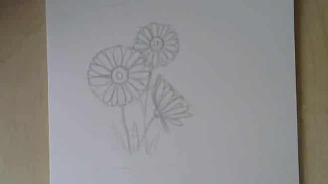 osnovanie-cvetka