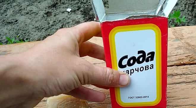pishchevoj-sody